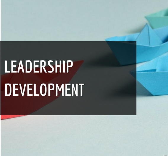 Image result for Leadership Development Consulting Firms
